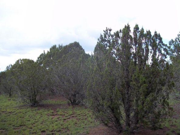 7937 N. Perrin Ln., Williams, AZ 86046 Photo 3