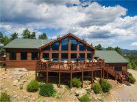 Home for sale: 239 Park Avenue, Pine, CO 80470