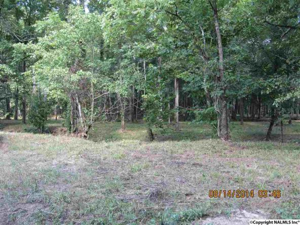 1865 County Rd. 99, Gaylesville, AL 35973 Photo 16