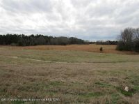 Home for sale: 00000 Hwy. 302, Red Banks, MS 38661