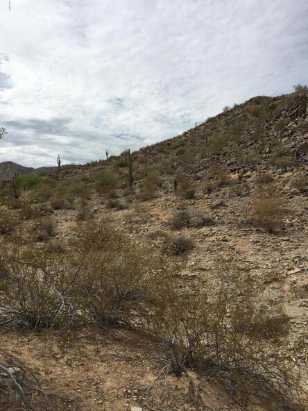 13829 S. Canyon Dr., Phoenix, AZ 85048 Photo 3