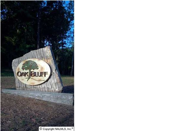 3 South Bluff Trail, Huntsville, AL 35803 Photo 2