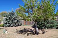 Home for sale: 100 N. Pinecrest Rd., Payson, AZ 85541