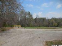 Home for sale: 323 Beth Rd. N.E., New Market, AL 35761