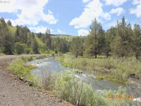 Home for sale: Middle Fork Ln., Ritter, OR 97817