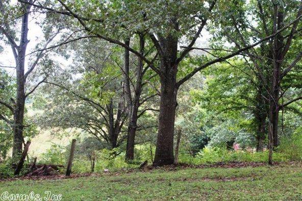 192 Gaylor Ln., Mountain View, AR 72560 Photo 15