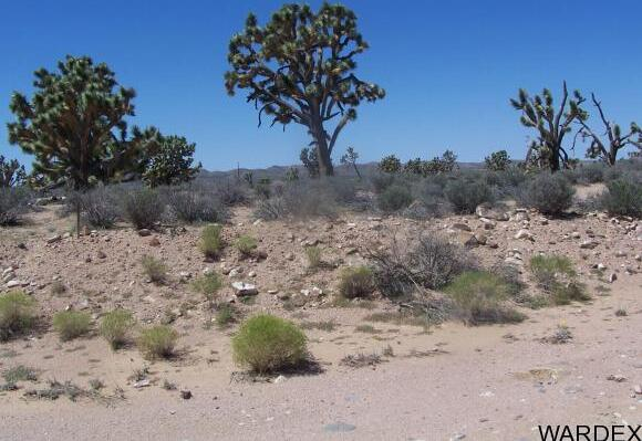 26865 N. Verde Rd., Meadview, AZ 86444 Photo 10