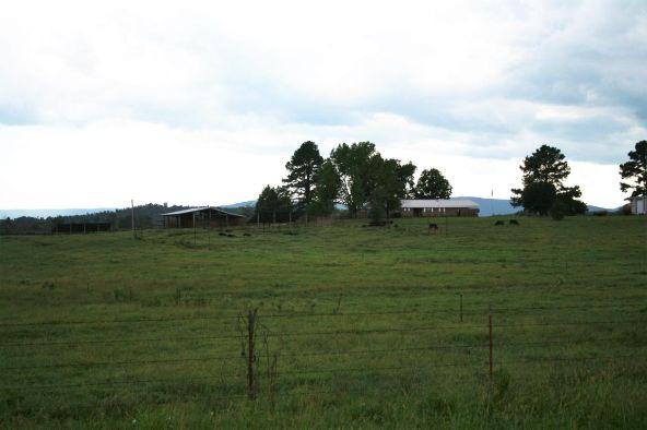 13142 Cedar Creek Rd., Belleville, AR 72824 Photo 3