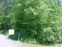 Home for sale: Parcel 10 Stinnett Ridge Rd., Cosby, TN 37722