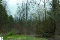 Home for sale: 000 Lamoreaux Dr., Elk Rapids, MI 49629