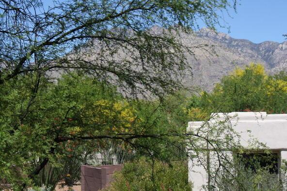 5051 N. Sabino Canyon, Tucson, AZ 85750 Photo 6