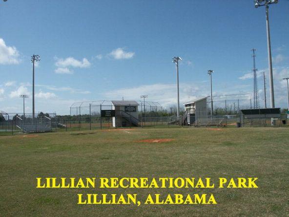 10180 Tarklin View Dr., Lillian, AL 36549 Photo 36