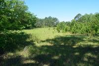 Home for sale: 245 Davis Landing Rd., Baxley, GA 31513