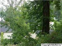 Home for sale: 00 Willow Beach Rd., Guntersville, AL 35976