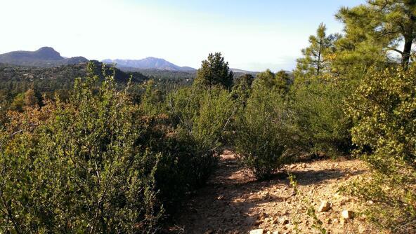 901 S. Skyview Dr., Prescott, AZ 86303 Photo 18
