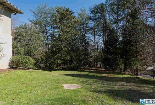 3900 Dunbarton Dr., Mountain Brook, AL 35223 Photo 37