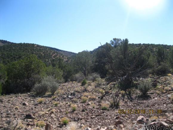 00 N. Willows Ranch Rd., Kingman, AZ 86401 Photo 8