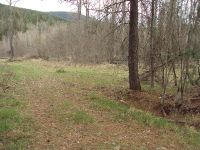 Home for sale: Lauer Ln., Libby, MT 59923