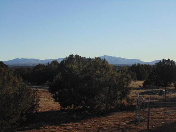 38236 W. Howling Coyote, Seligman, AZ 86337 Photo 50