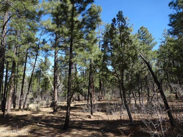 1090 W. Sadler Ln., Lakeside, AZ 85929 Photo 11