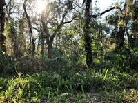 Home for sale: 6 Sanchez Avenue, Palm Coast, FL 32137