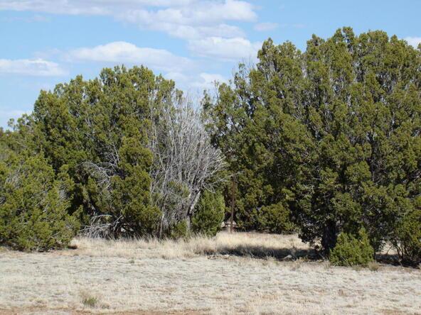 2319 Sitgreaves St., White Mountain Lake, AZ 85912 Photo 16