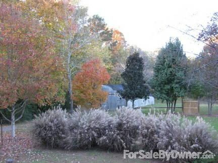 1520 Jones Rd., Springville, AL 35146 Photo 26