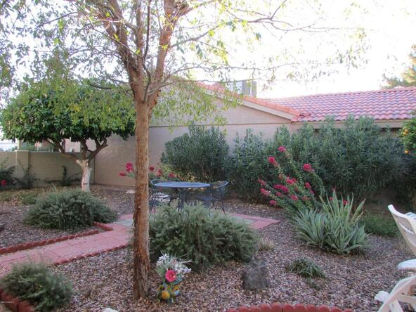 9438 E. Michigan Avenue, Sun Lakes, AZ 85248 Photo 46
