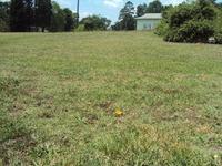 Home for sale: 00 Placid Ct., Spartanburg, SC 29307