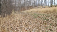 Home for sale: Lot #A Slover Triangle Subdivision, Eddyville, KY 42038