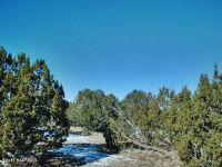 Home for sale: 29605 Rock Ridge Rd., Seligman, AZ 86337
