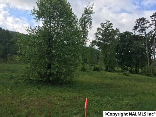 3 County Rd. 67, Langston, AL 35755 Photo 5
