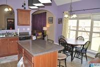 Home for sale: 193 Sharpe St., Sterrett, AL 35147