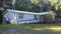 Home for sale: 256 County Rd. 421, Abbeville, AL 36310