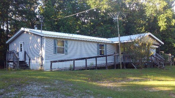 256 County Rd. 421, Abbeville, AL 36310 Photo 1