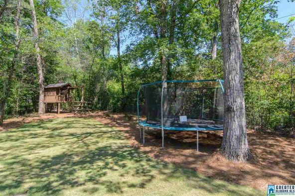 3516 Belle Meade Cir., Mountain Brook, AL 35223 Photo 65