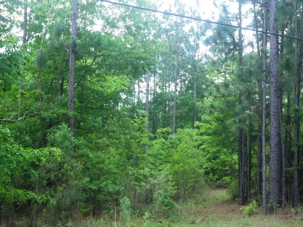500 South Rd., Atmore, AL 36502 Photo 1