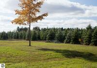 Home for sale: 0015 Lipp Farm Rd., Benzonia, MI 49616