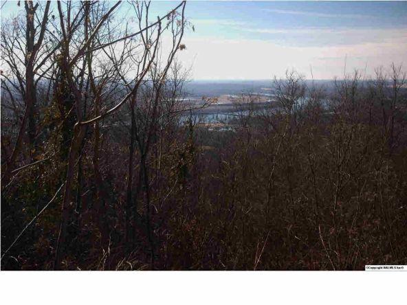 9 South Bluff Trail, Huntsville, AL 35803 Photo 3