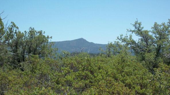 509 N. Chaparral Pines Dr., Payson, AZ 85541 Photo 5