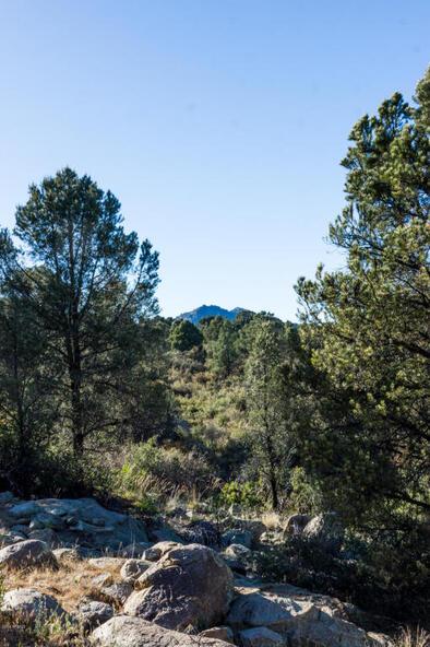 17955 W. Buckhorn Dr., Peeples Valley, AZ 86332 Photo 13