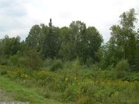 Home for sale: Lot 25 Moose Ridge Rd., Rangeley, ME 04970