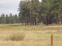 Home for sale: Cr 2107, Alpine, AZ 85920
