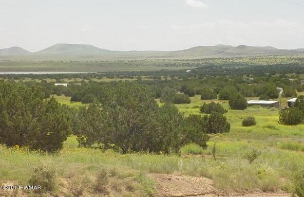 1b N. 8690, Concho, AZ 85924 Photo 11