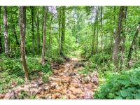 Home for sale: 610 Mullinax Rd., Jasper, GA 30143