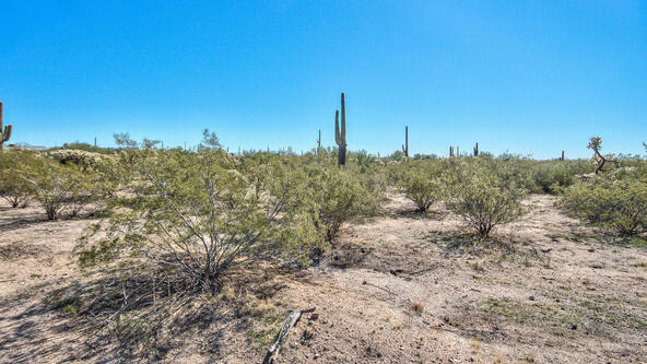 27361 E. Quartzite Dr., Florence, AZ 85132 Photo 12