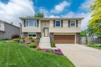 Home for sale: 238 South Park Pl. Dr., Bartlett, IL 60103
