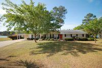 Home for sale: 170 Lake Lure Dr., Alma, GA 31510