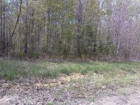 Home for sale: Lot 140 Lot 140 Big Piney Loop, Wilder, TN 38589