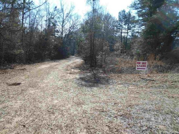 16.9 Acres Private Rd. 1363, Ariton, AL 36311 Photo 2